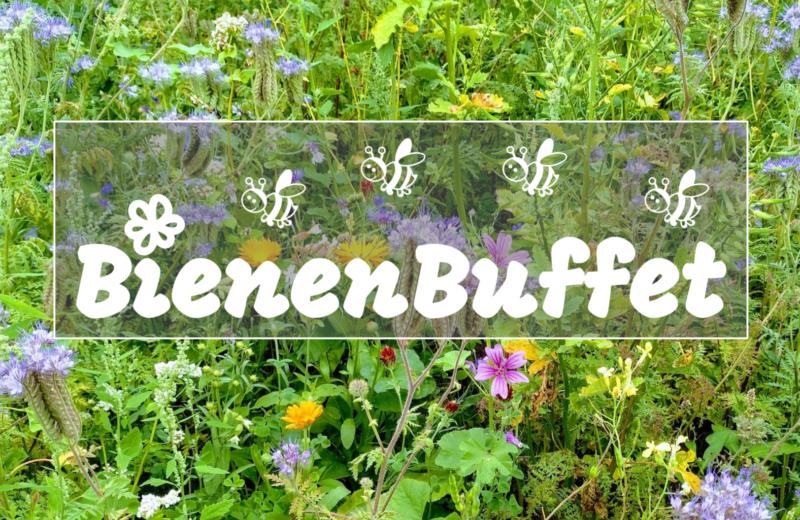 BienenBuffet-Profilbild